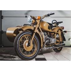 Motorcycle KMZ DNEPR МВ 800 (2WD) (Desert Storm) (completely restored)