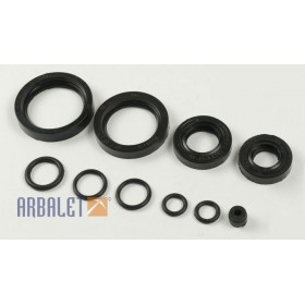 Set of seals for gearbox (sealset)