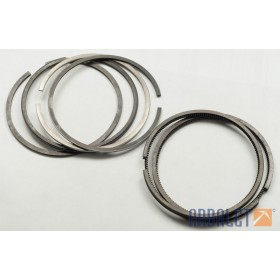 Pistons  Diameter 79.0 (pair) with rings (KM3-8.15501237)
