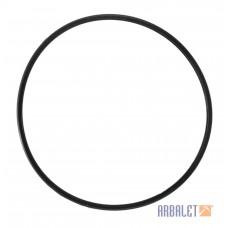 Sealing ring (MT801211)