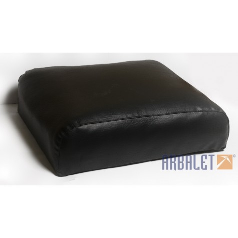 Cushion (650213)