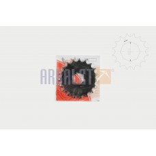Transmission gear (front) 428-19T (C-976)
