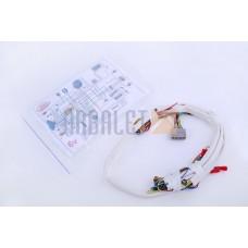 Wiring 6V (P-1441)